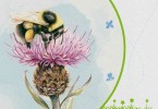 All-Ireland Pollinator Plan 2015-2020