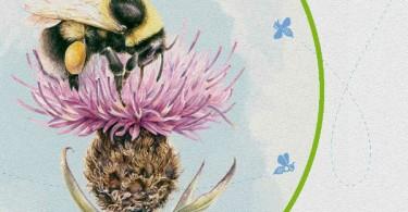 All-Ireland Pollinator Plan 2015-2020