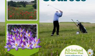 Cover image of Pollinator-friendly management of Golf Courses leaflet