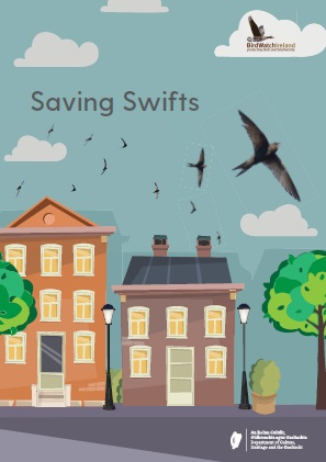 Saving Swifts booklet cover (photo courtesy of Birdwatch Ireland)